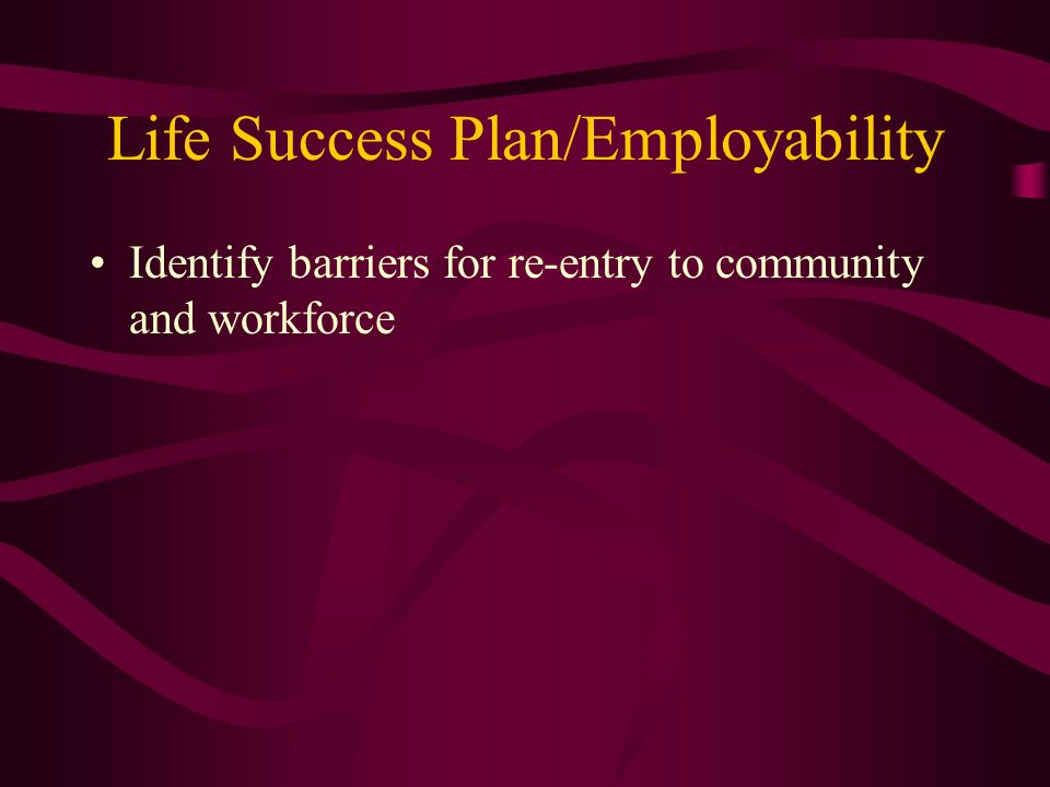 Life Success Plan/Employability Identify barriers for re-entry to community and workforce