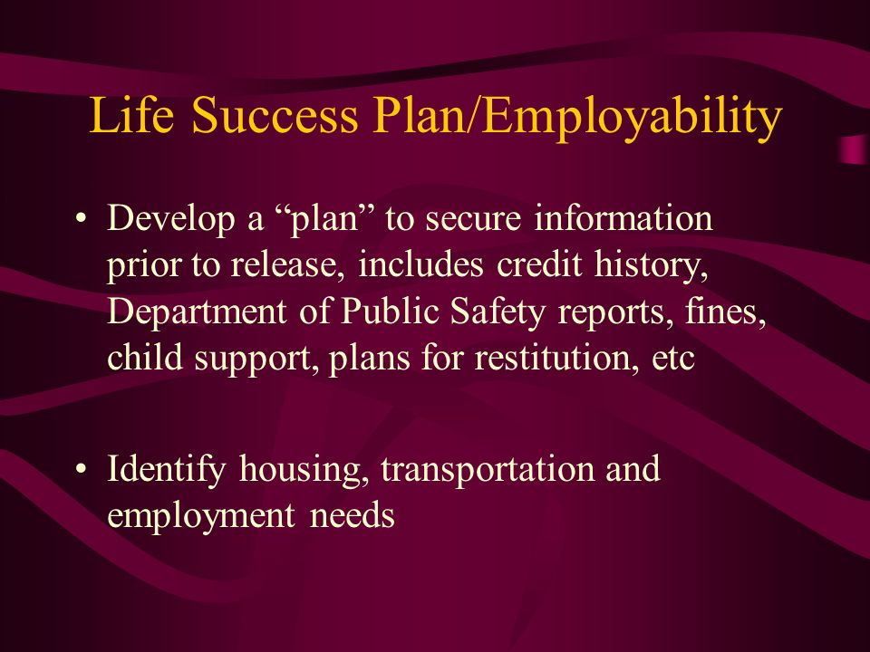 Life Success Plan/Employability Develop a plan to secure information prior to release, includes credit history, Department of Public Safety reports, f