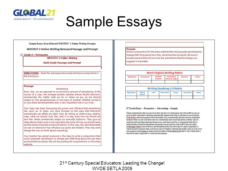 Sample Essays 21 st Century Special Educators: Leading the Change! WVDE SETLA 2009