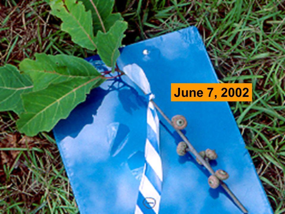 June 7, 2002