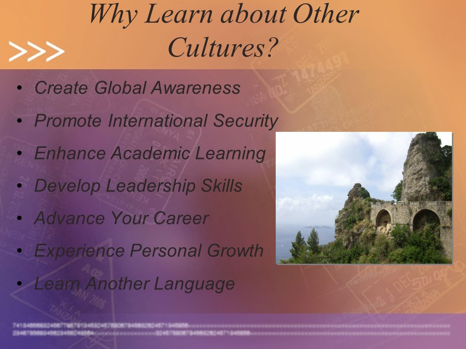 Why Learn about Other Cultures? Create Global Awareness Promote International Security Enhance Academic Learning Develop Leadership Skills Advance You
