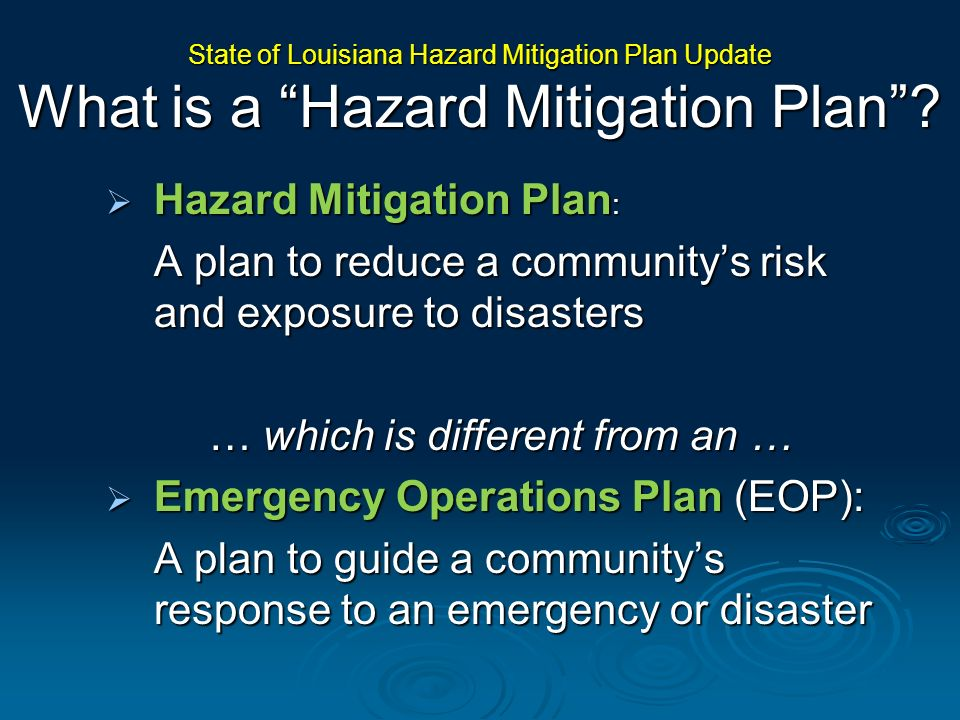 Summary of Goals and Objectives The CEO Project will build upon State Hazard Mitigation Plan elements to promote municipal government and community capacity to mitigate.