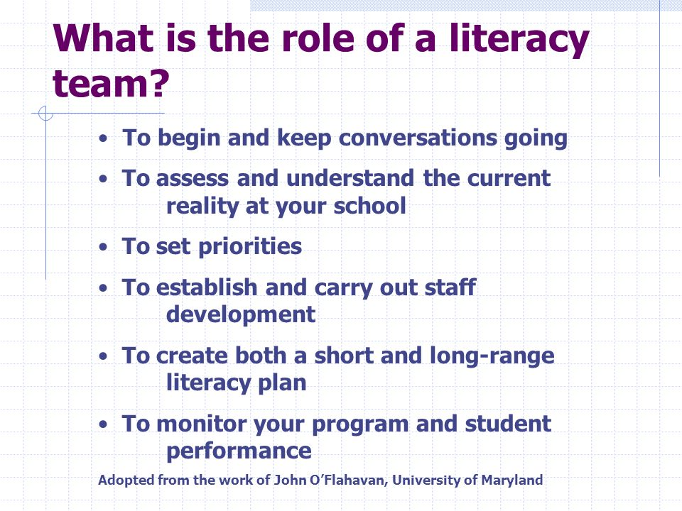 So What is a Literacy Team.
