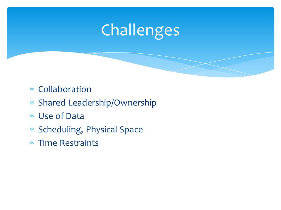 Emerging Goals TEST Talks DP21 Data Walls Attendance for Teachers Teacher Morale External Service Provider