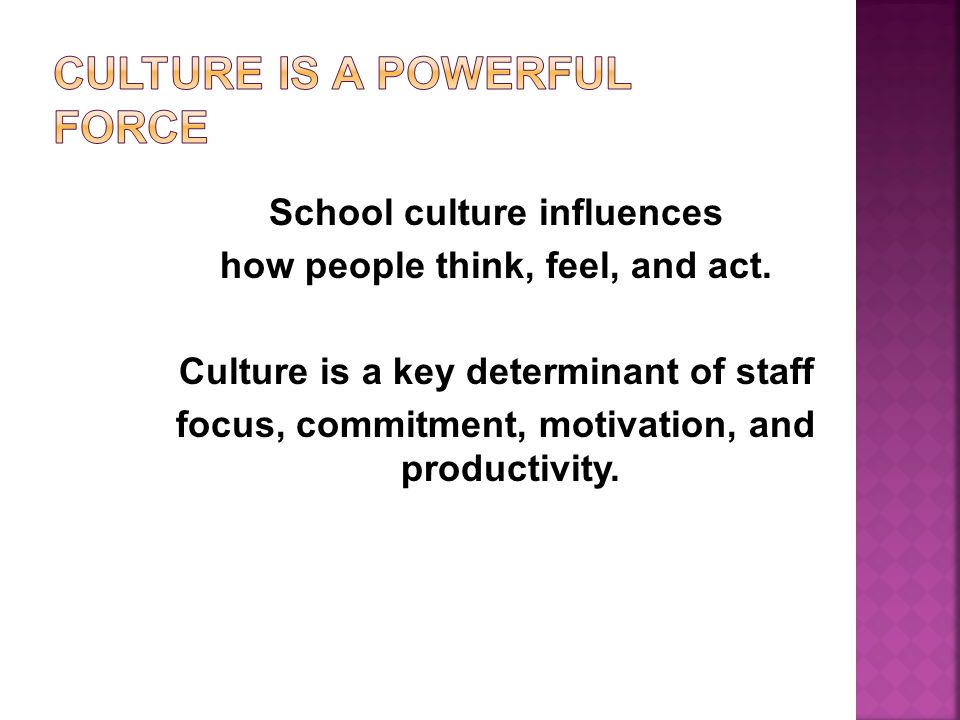 At a deeper level, all organizations, especially schools, improve performance by fostering a shared system of norms, folkways, values, and traditions.