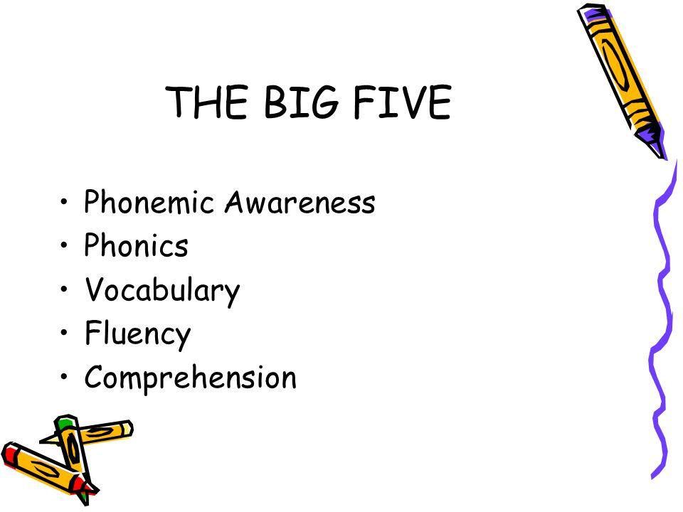 THE BIG FIVE Phonemic Awareness Phonics Vocabulary Fluency Comprehension