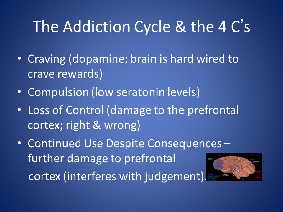 Predisposition & Progression Genetics / Environment InitiationHeavy Use Dependence Substance Use ……… Substance Misuse / Substance Abuse Substance Dependence / Addiction