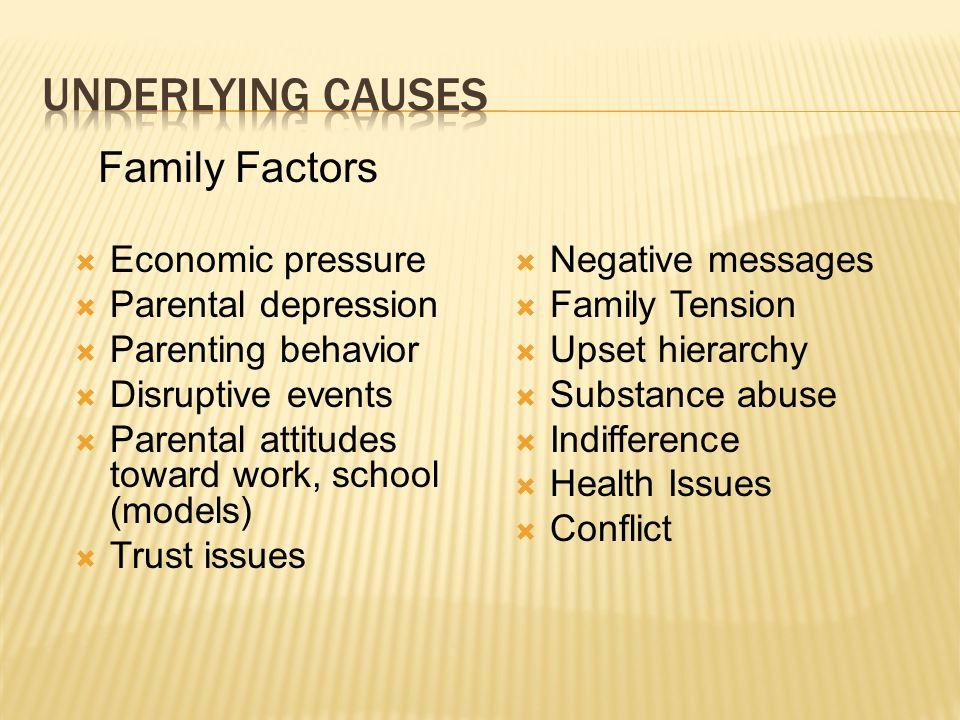 Economic pressure Parental depression Parenting behavior Disruptive events Parental attitudes toward work, school (models) Trust issues Family Factors