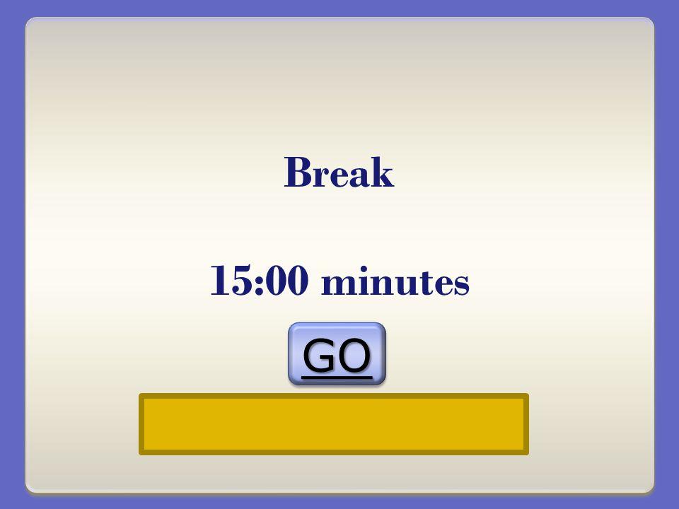 Break 15:00 minutes GOGO