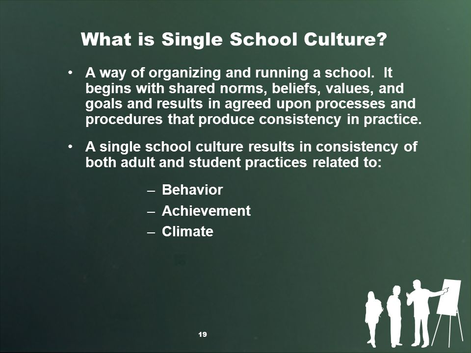 What is Single School Culture. A way of organizing and running a school.