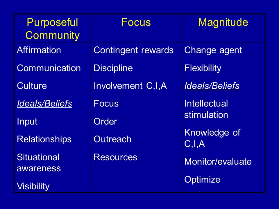 Purposeful Community FocusMagnitude Affirmation Communication Culture Ideals/Beliefs Input Relationships Situational awareness Visibility Contingent r