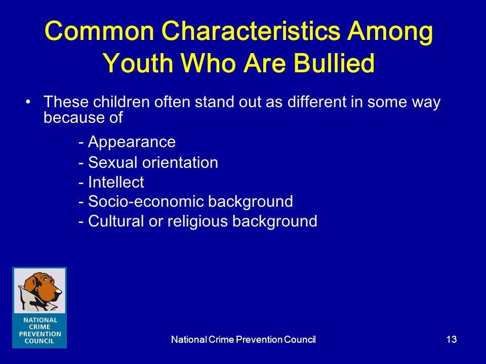 National Crime Prevention Council13 Common Characteristics Among Youth Who Are Bullied These children often stand out as different in some way because
