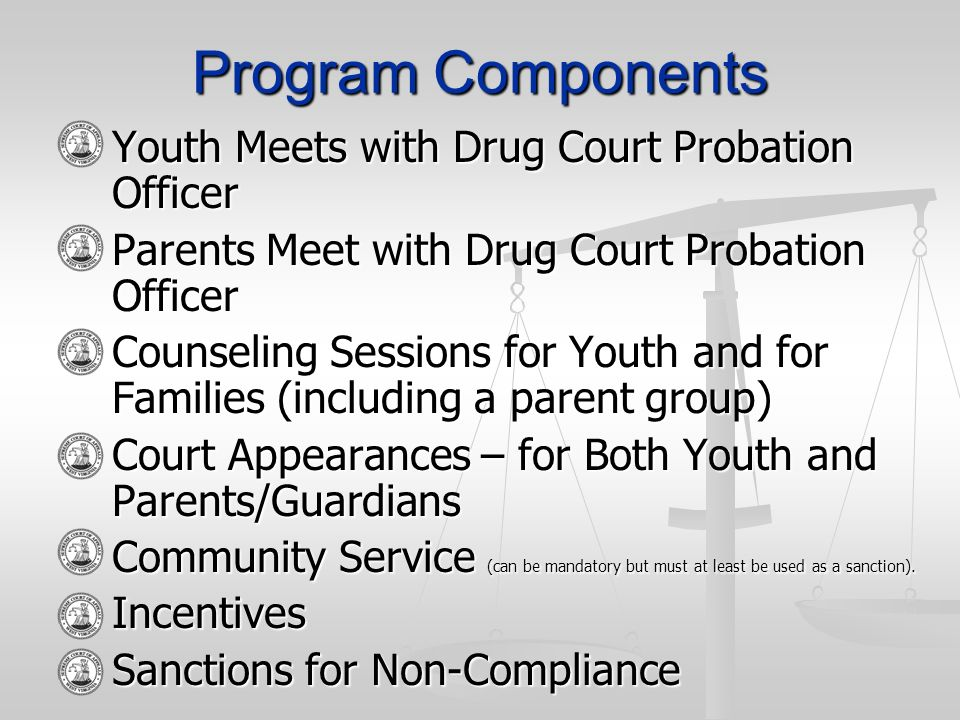 Program Components Youth Meets with Drug Court Probation Officer Youth Meets with Drug Court Probation Officer Parents Meet with Drug Court Probation