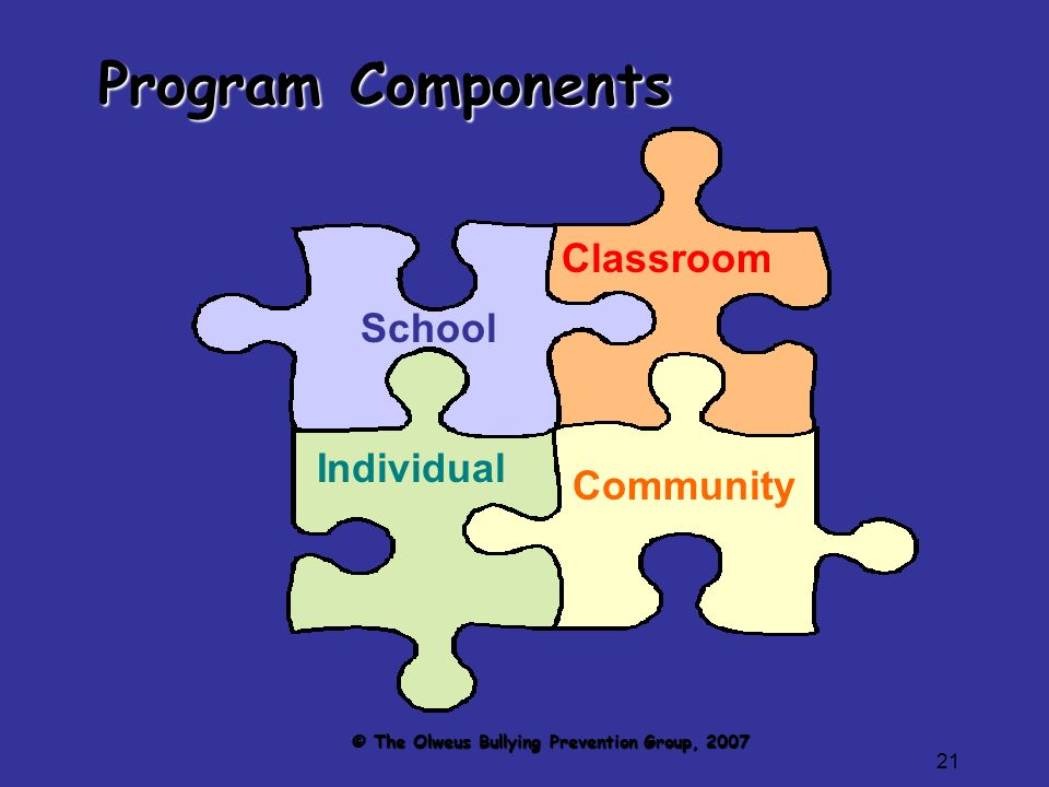 21 Program Components School Individual Classroom Community © The Olweus Bullying Prevention Group, 2007