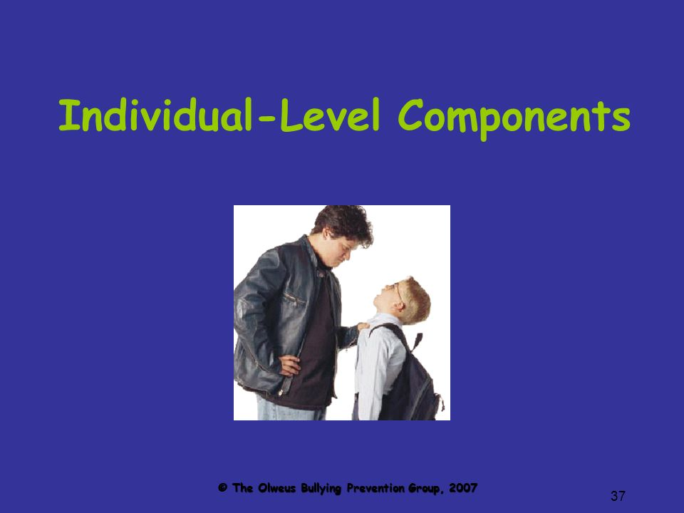 37 Individual-Level Components © The Olweus Bullying Prevention Group, 2007