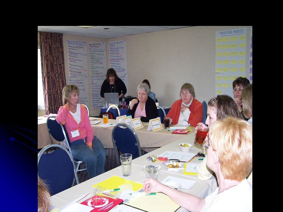 PROCESS Kathy and Teri chaired the process Kathy and Teri chaired the process Rebecca King, Becky King and Eileen Barker served as resource persons & coordinated arrangements Rebecca King, Becky King and Eileen Barker served as resource persons & coordinated arrangements Julie Pratt provided neutral facilitation Julie Pratt provided neutral facilitation Financial support covered participants costs Financial support covered participants costs