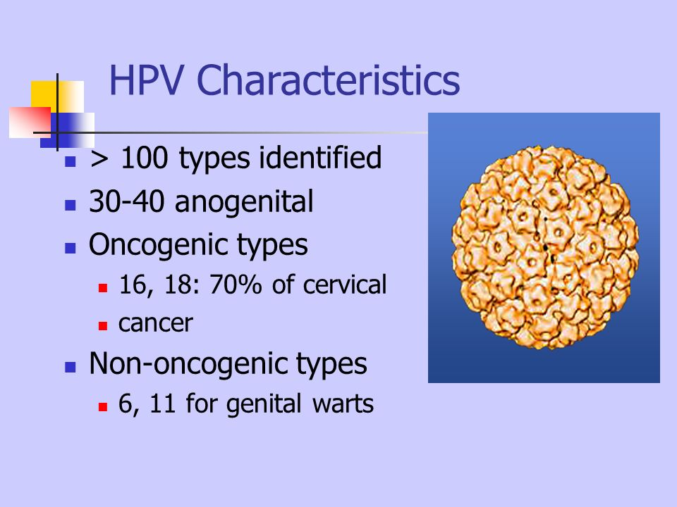 HPV Characteristics > 100 types identified 30-40 anogenital Oncogenic types 16, 18: 70% of cervical cancer Non-oncogenic types 6, 11 for genital warts