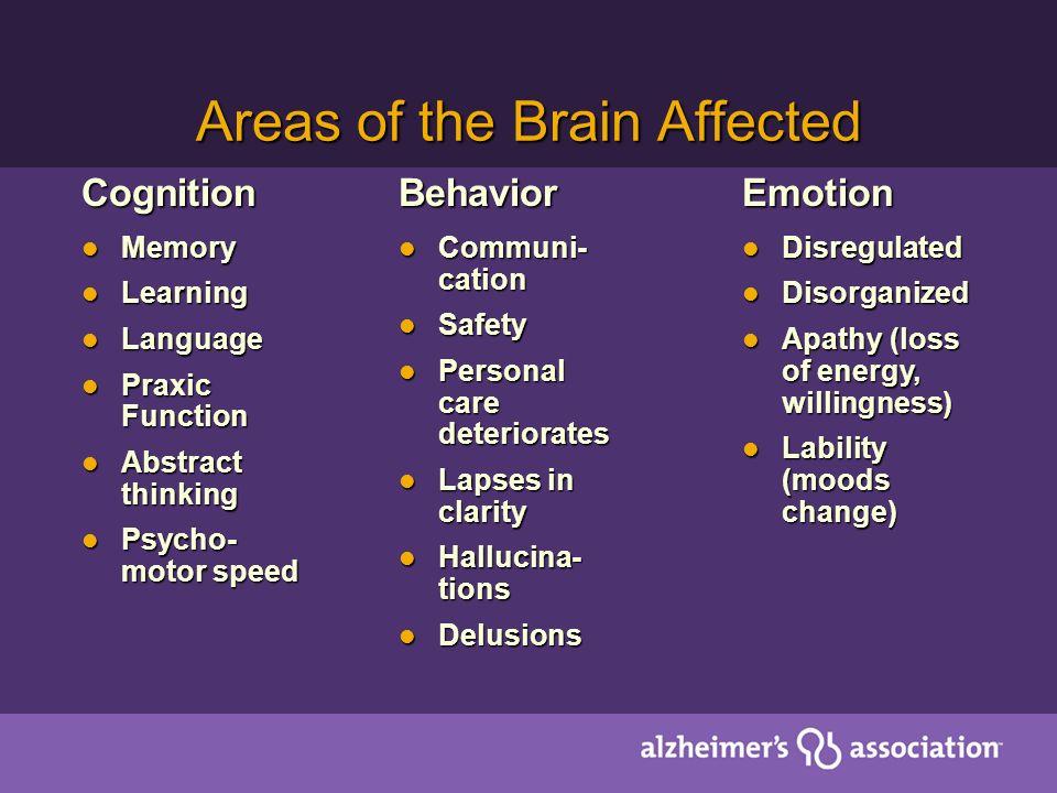 Alzheimers Association Helpline Helpline Family Education Family Education Support Groups Support Groups Care Consultation Care Consultation Safe Return Safe Return