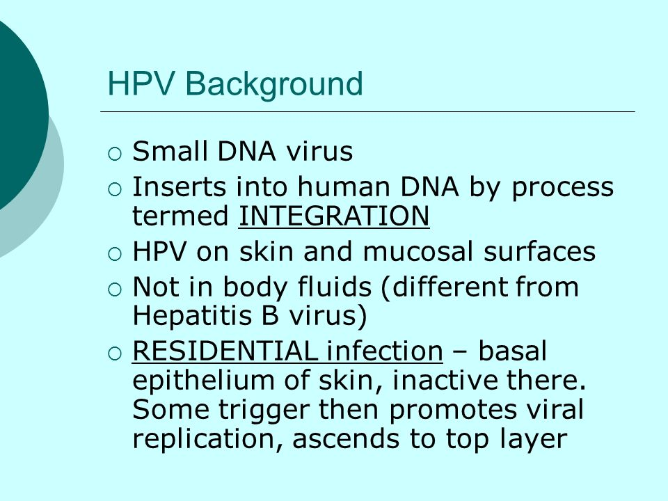 HPV Background Small DNA virus Inserts into human DNA by process termed INTEGRATION HPV on skin and mucosal surfaces Not in body fluids (different fro