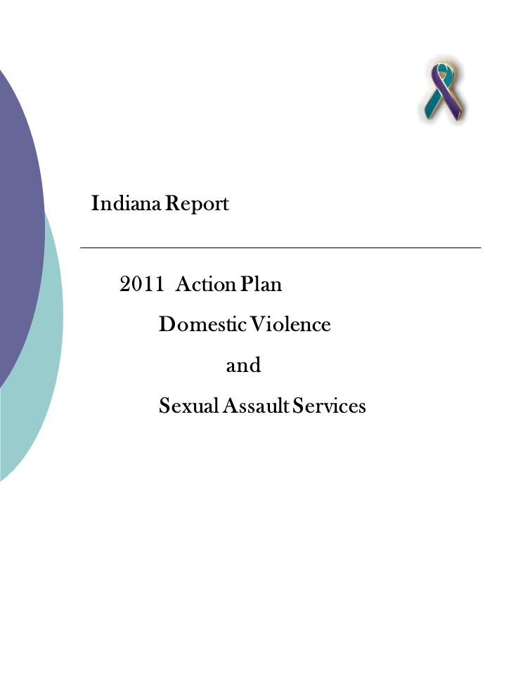 Indiana Report 2011 Action Plan Domestic Violence and Sexual Assault Services