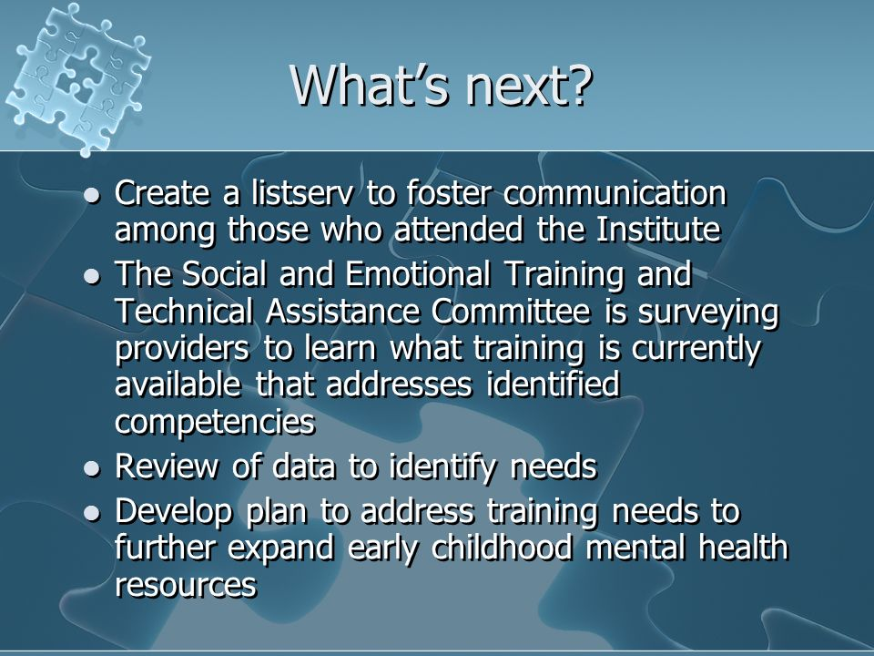 Whats next? Create a listserv to foster communication among those who attended the Institute The Social and Emotional Training and Technical Assistanc