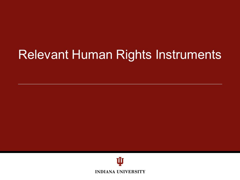 Relevant Human Rights Instruments