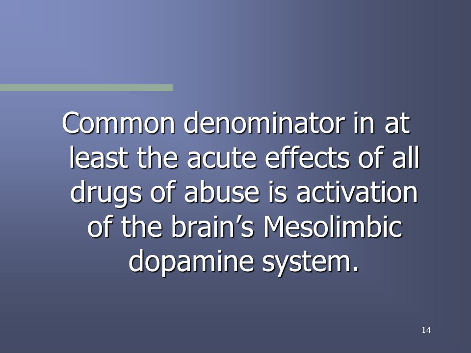 14 Common denominator in at least the acute effects of all drugs of abuse is activation of the brains Mesolimbic dopamine system.