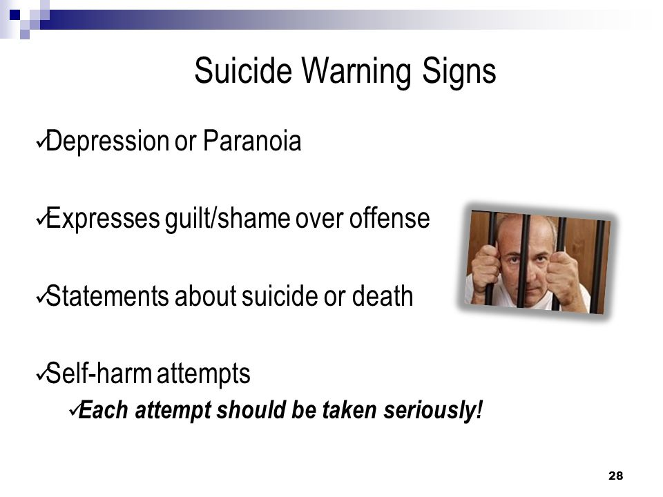 Suicide Warning Signs Depression or Paranoia Expresses guilt/shame over offense Statements about suicide or death Self-harm attempts Each attempt shou