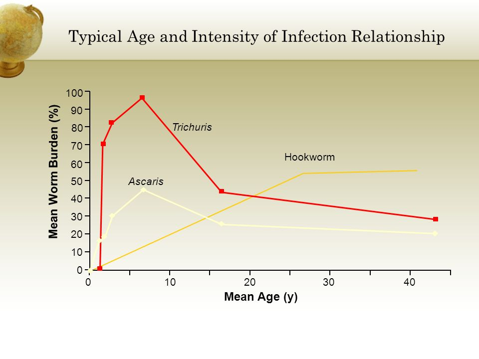 Typical Age and Intensity of Infection Relationship Mean Age (y) Mean Worm Burden (%) 10 20 30 40 50 60 70 80 90 100 Trichuris Ascaris Hookworm 020304