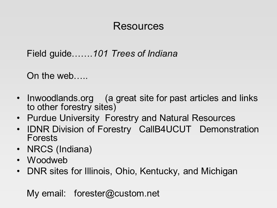Resources Field guide…….101 Trees of Indiana On the web….. Inwoodlands.org (a great site for past articles and links to other forestry sites) Purdue U