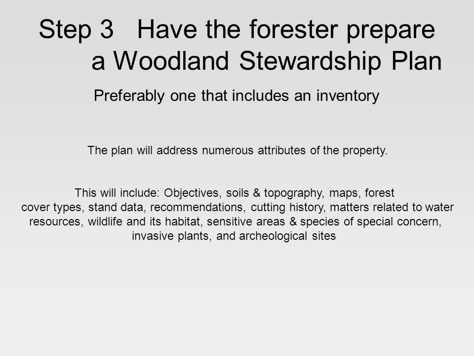 Step 3 Continued Have the Forester Develop a Plan Your objectives are a crucial part of the Plan The Stewardship Plan will identify the various management units These management units will come with suggested recommendations for practices and a suggested timeline to implement them Normally comprehensive of landscape The plan must be flexible; it can be easily reworded