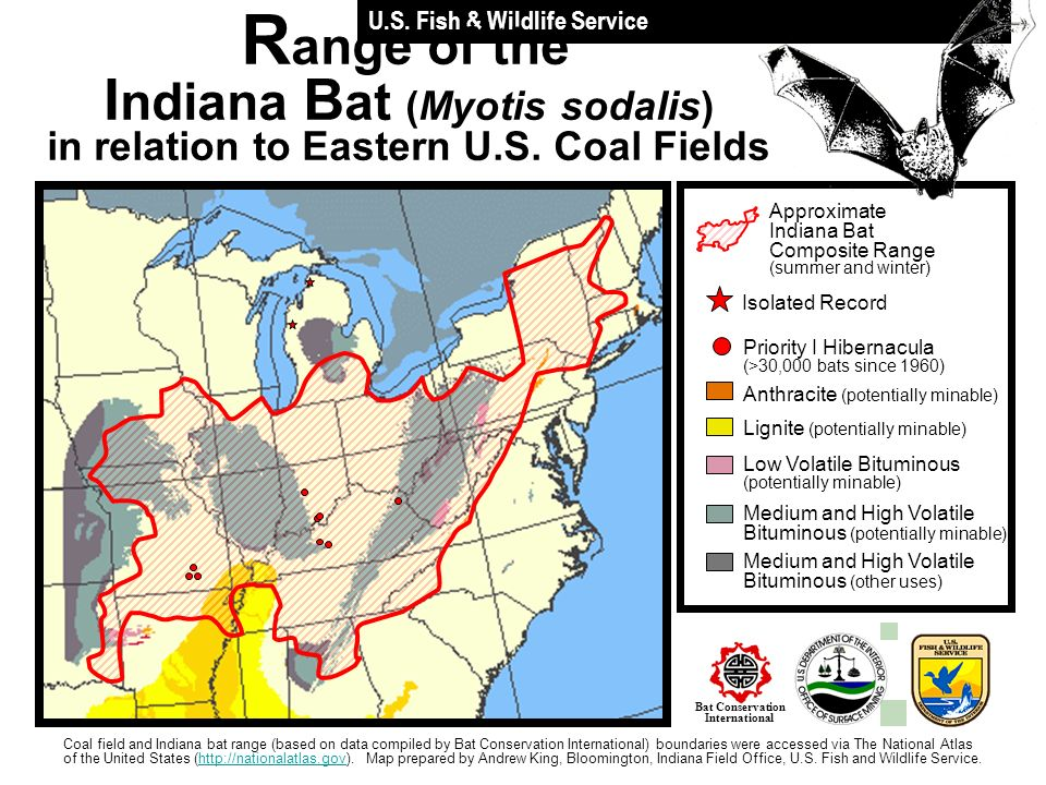 Approximate Indiana Bat Composite Range (summer and winter) Anthracite (potentially minable) Lignite (potentially minable) Low Volatile Bituminous (po
