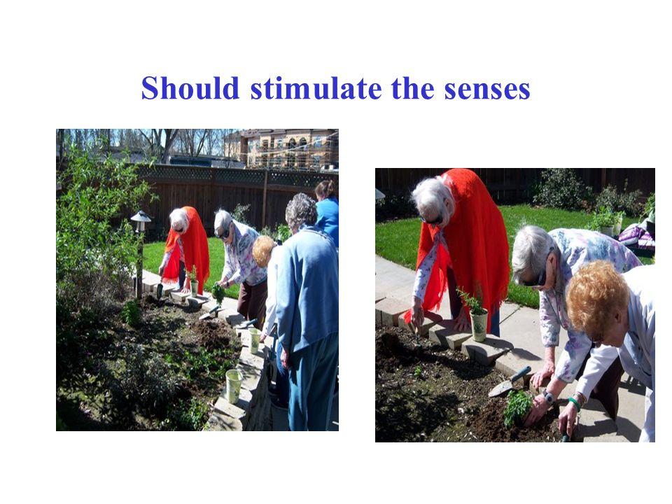 Should stimulate the senses