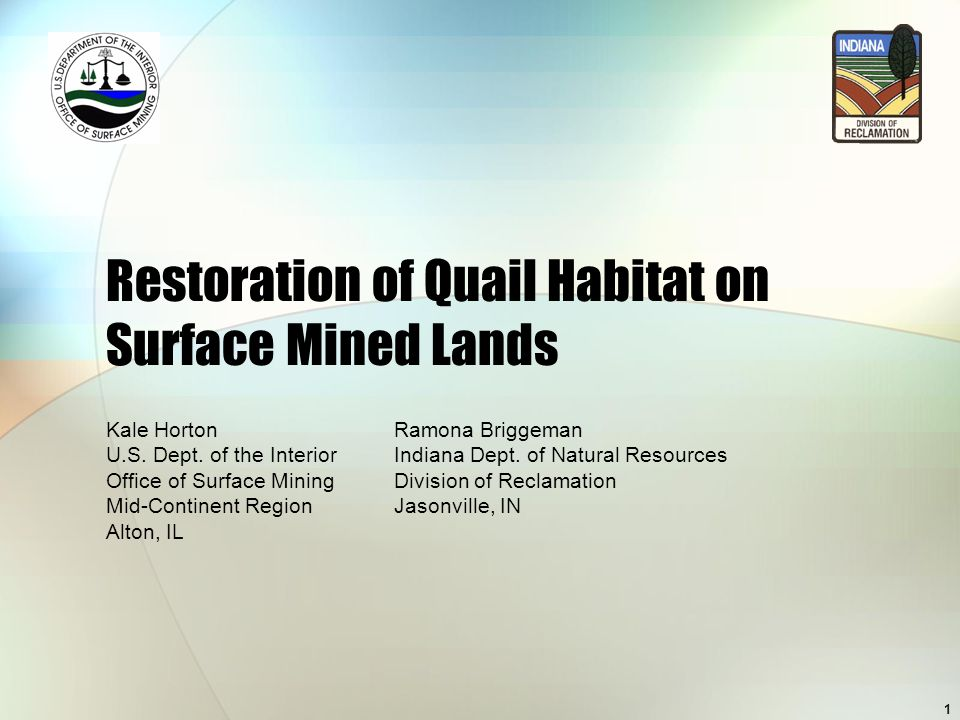 1 Restoration of Quail Habitat on Surface Mined Lands Kale HortonRamona Briggeman U.S. Dept. of the InteriorIndiana Dept. of Natural Resources Office