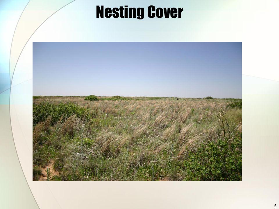 6 Nesting Cover