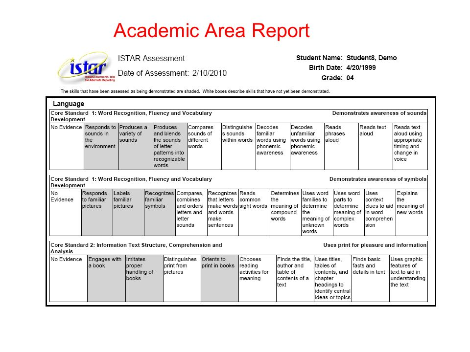 Academic Area Report