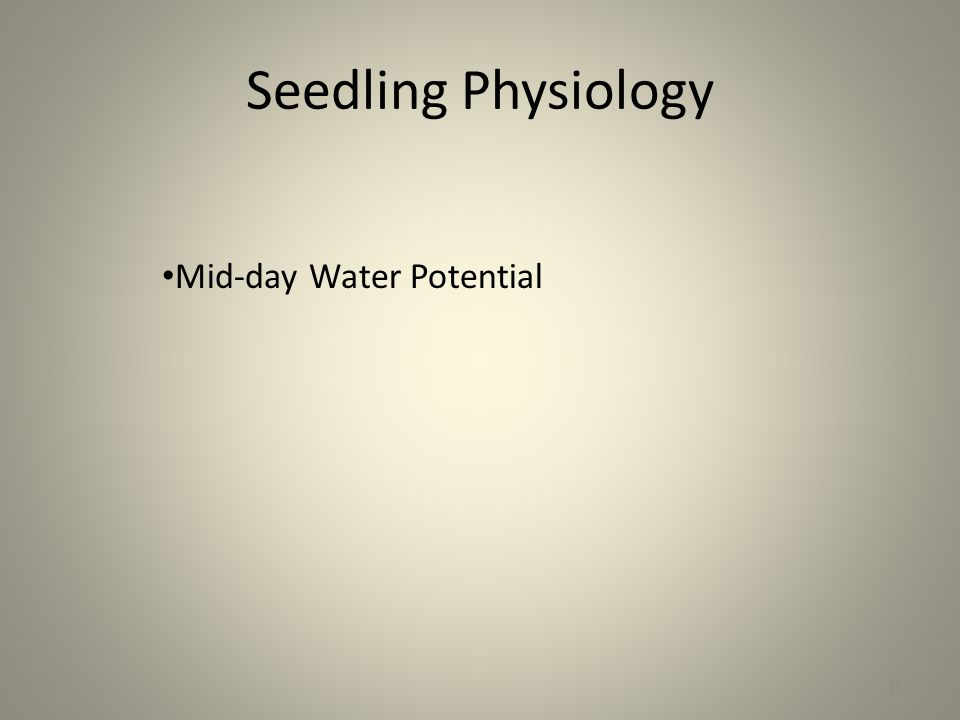 Seedling Physiology 15 Mid-day Water Potential