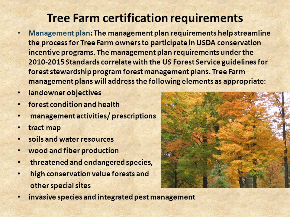 Tree Farm certification requirements Management plan: The management plan requirements help streamline the process for Tree Farm owners to participate in USDA conservation incentive programs.