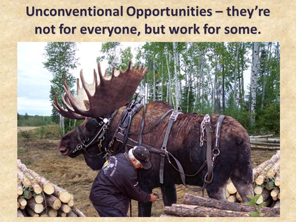 Unconventional Opportunities – theyre not for everyone, but work for some.