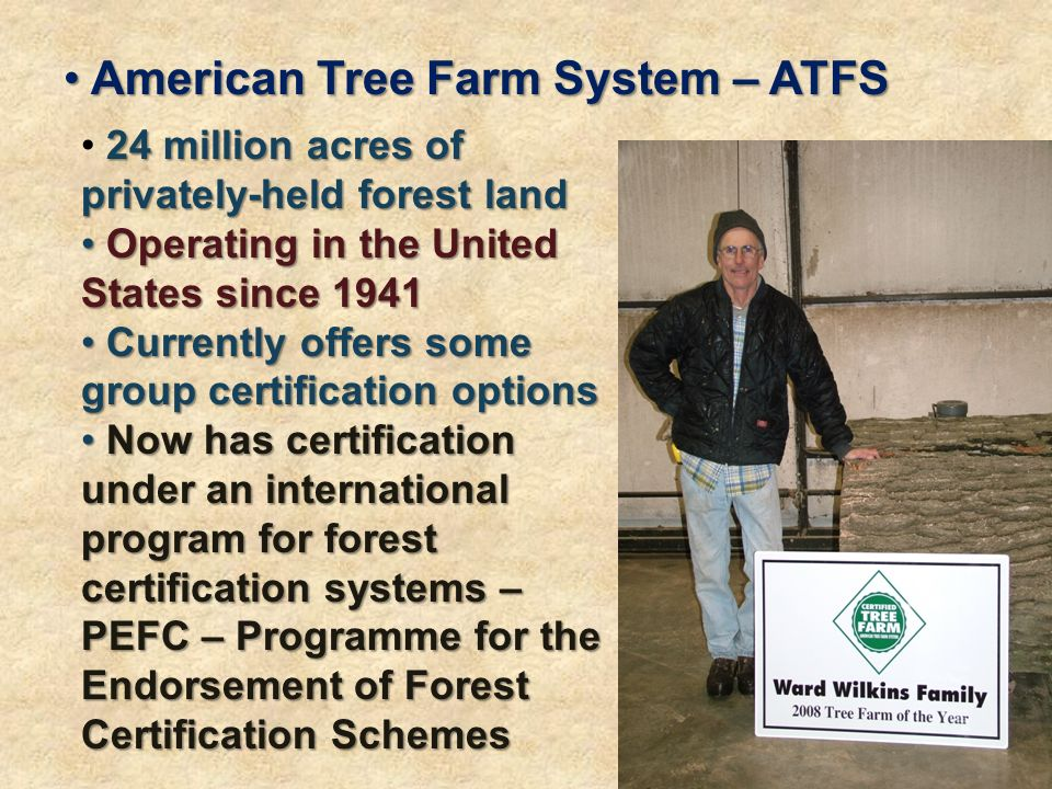 American Tree Farm System – ATFS American Tree Farm System – ATFS 24 million acres of privately-held forest land Operating in the United States since 1941 Operating in the United States since 1941 Currently offers some group certification options Currently offers some group certification options Now has certification under an international program for forest certification systems – PEFC – Programme for the Endorsement of Forest Certification Schemes Now has certification under an international program for forest certification systems – PEFC – Programme for the Endorsement of Forest Certification Schemes
