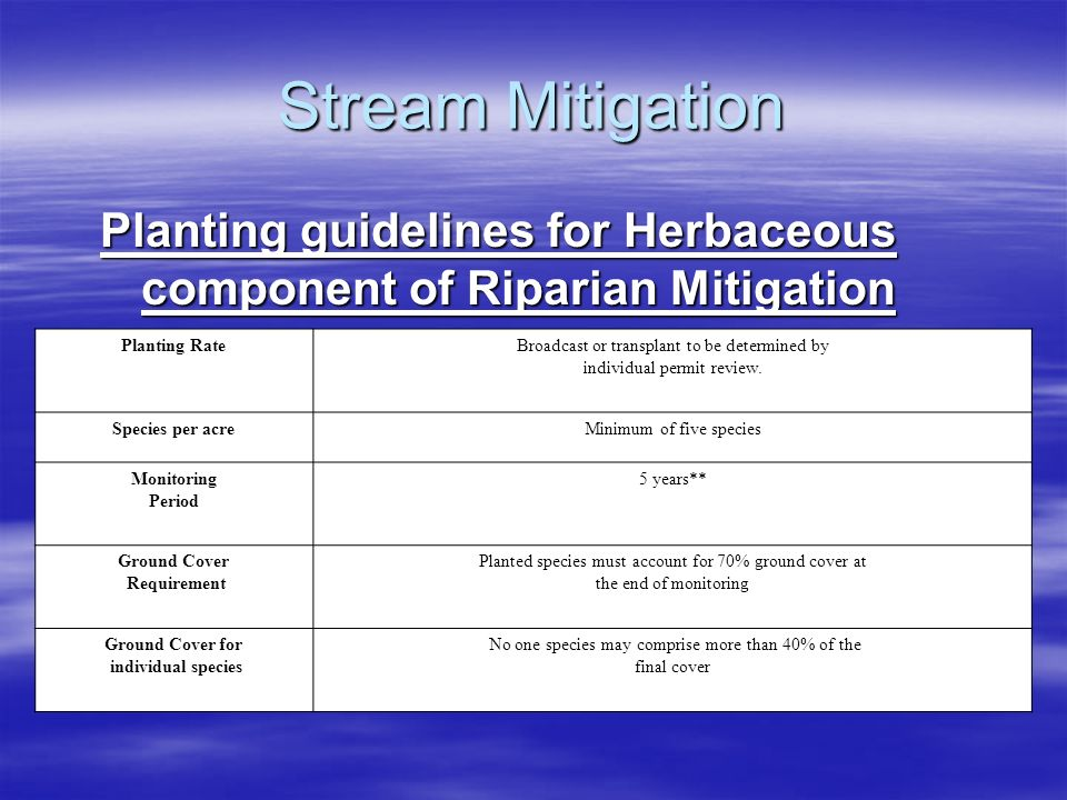 Stream Mitigation Planting guidelines for Herbaceous component of Riparian Mitigation Planting RateBroadcast or transplant to be determined by individ