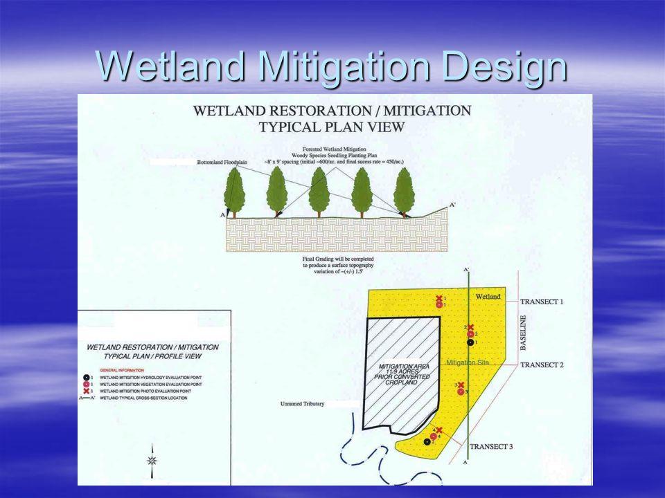 Wetland Mitigation Design