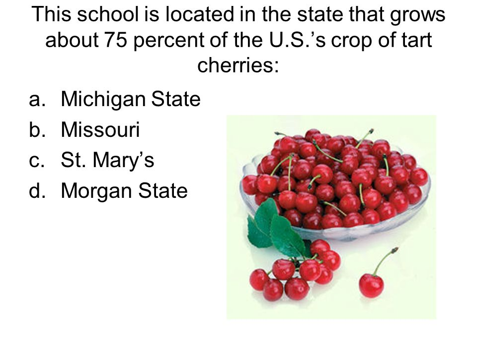 This school is located in the state that grows about 75 percent of the U.S.s crop of tart cherries: a.Michigan State b.Missouri c.St.