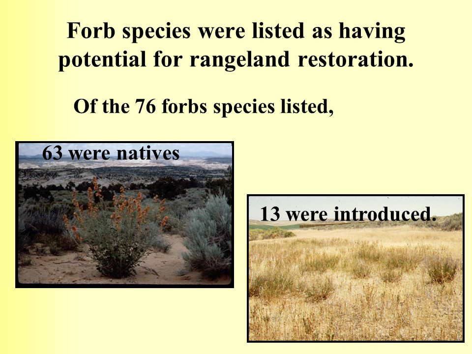 Forb species were listed as having potential for rangeland restoration. Of the 76 forbs species listed, 63 were natives 13 were introduced.