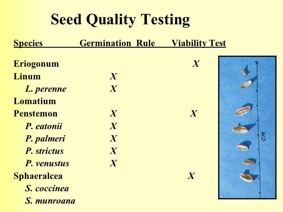 Seed Quality Testing Species Germination Rule Viability Test Eriogonum X Linum X L.