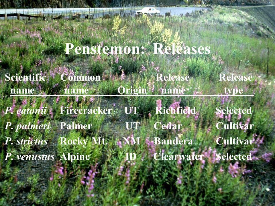 Scientific Common Release Release name name Origin name type.