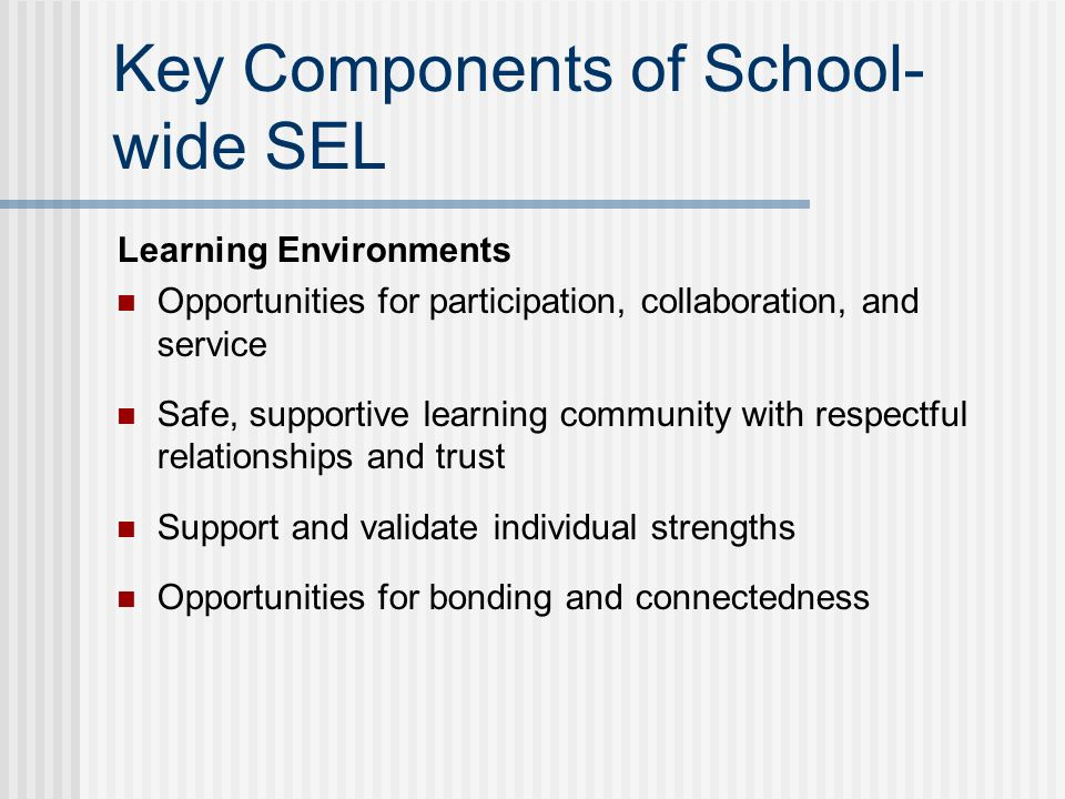 Key Components of School- wide SEL Learning Environments Opportunities for participation, collaboration, and service Safe, supportive learning community with respectful relationships and trust Support and validate individual strengths Opportunities for bonding and connectedness