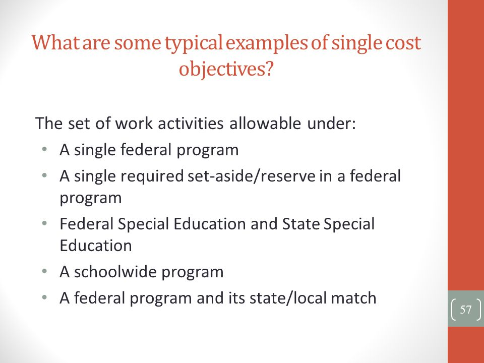 What are some typical examples of single cost objectives? The set of work activities allowable under: A single federal program A single required set-a