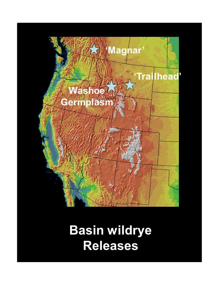 Washoe Germplasm Basin wildrye Releases Trailhead Magnar