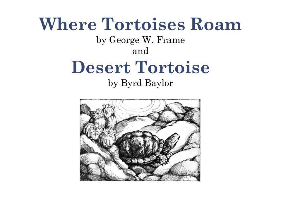 Where Tortoises Roam by George W. Frame and Desert Tortoise by Byrd Baylor